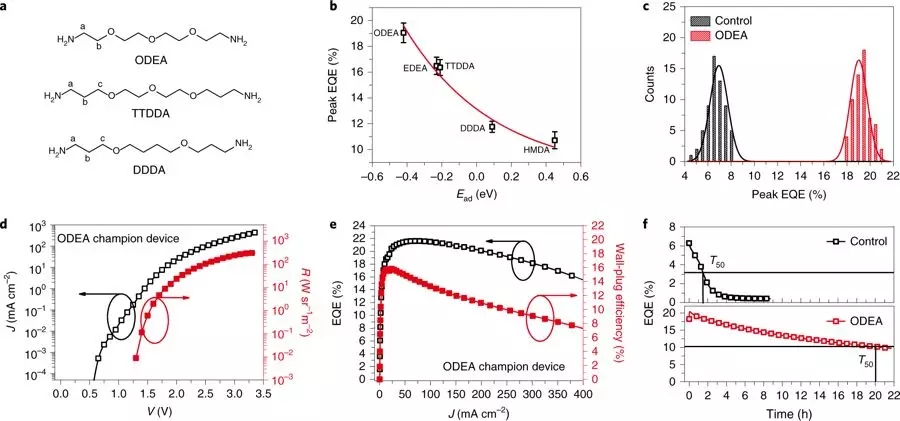Rational Molecular Passivation for High-performance Perovskite Light-emitting Diodes (Nature Photonicsvolume 13, pages418–424 (2019)​)